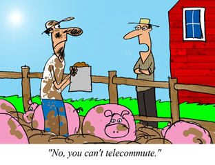Comic depicting someone who is not suited to Telework